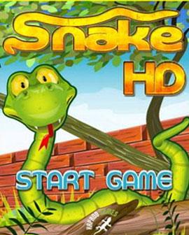贪吃蛇项目
